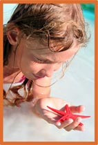 Girl holding starfish photo